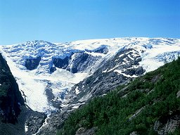Buarbreen  (Folgefonna, Norge)